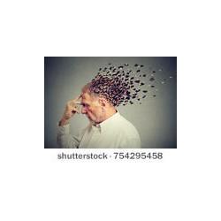 Alzheimer : Une maladie neurodégénérative