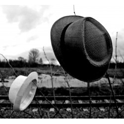 white hat ou black hat