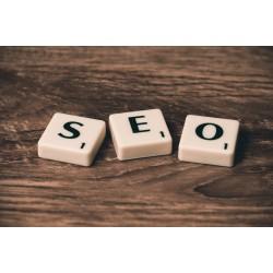 Comment trouver et recruter un expert SEO pour votre site ?