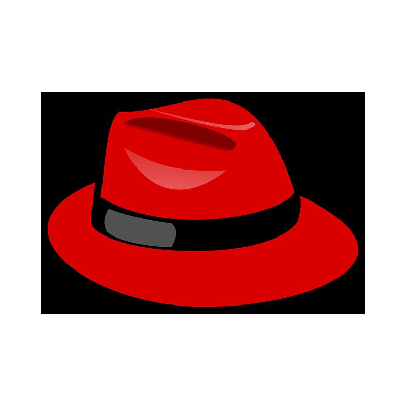 Des chapeaux pour souligner votre élégance