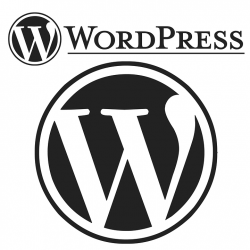 La sécurisation de votre site Wordpress est indispensable, comment la réaliser ?
