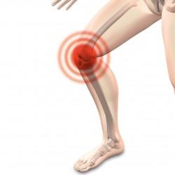 L'arthrose: une maladie très commune