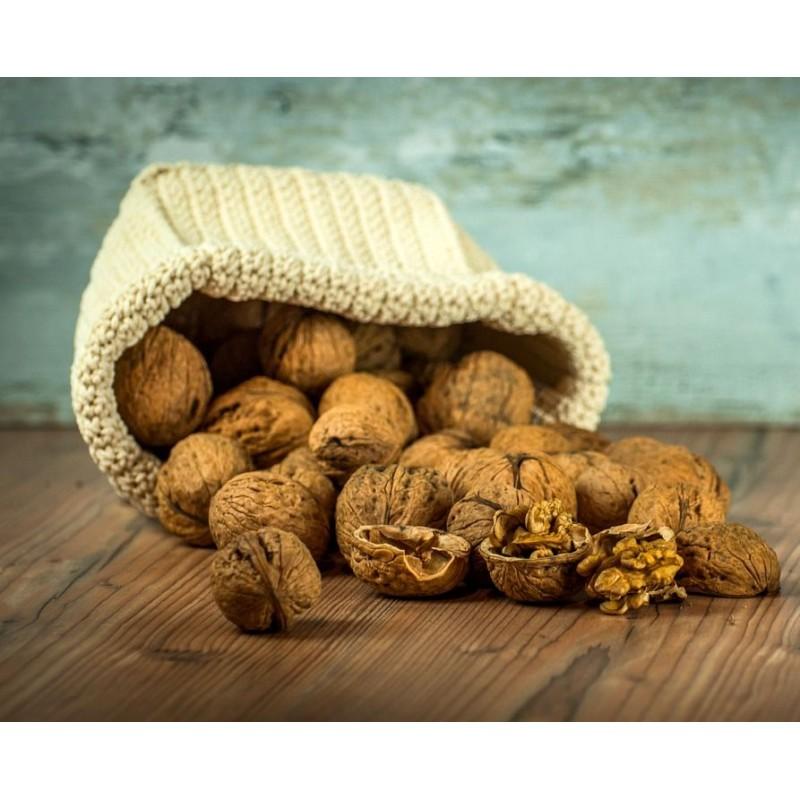 7 bonnes raison de manger des noix