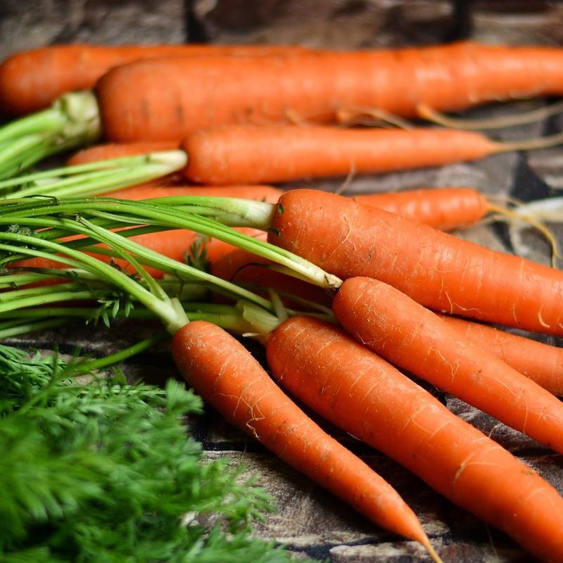 Légumes de saison en février : les carottes