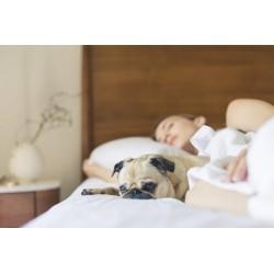 6 astuces pour mieux dormir