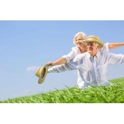 L'assurance-vie : en quoi consiste-t-elle ?