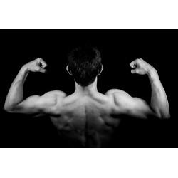 Des muscles travaillés attentivement