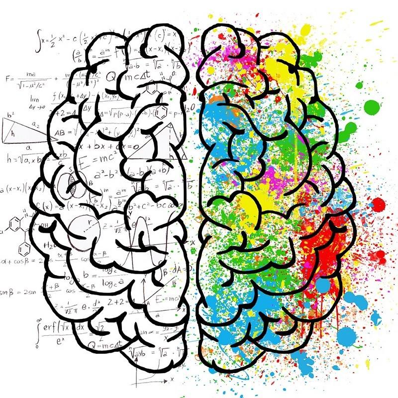 stimuler cerveau droit et cerveau gauche