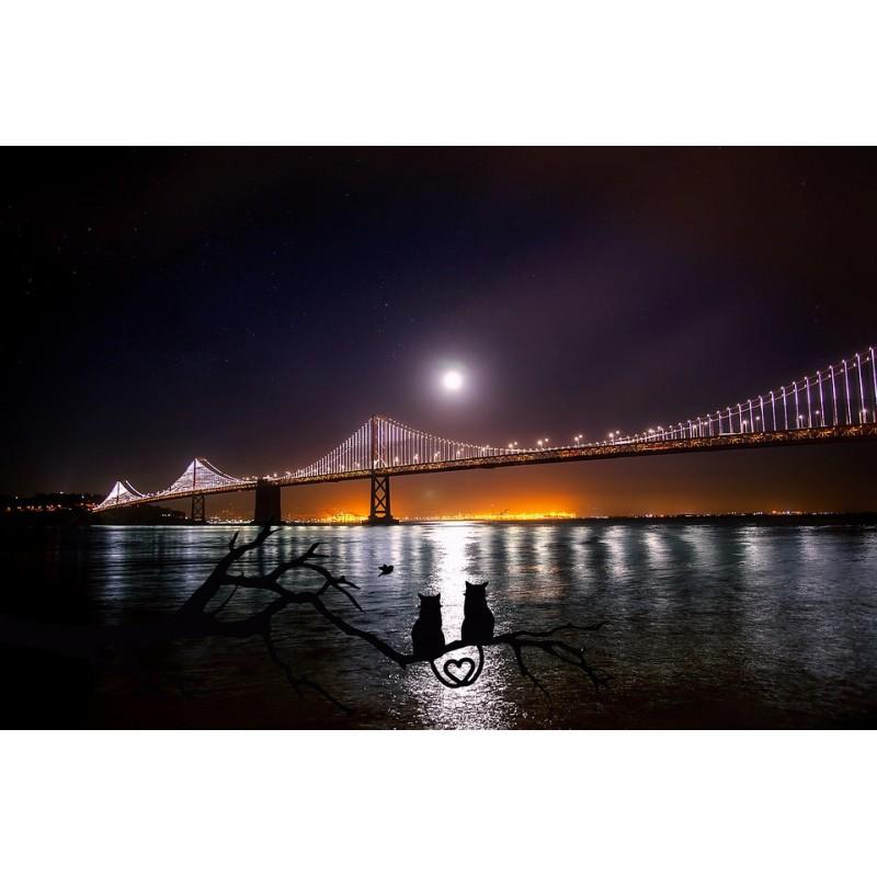 San Francisco, Bay Bridge, le pont suspendu le plus long du monde