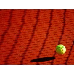 Corruption dans le tennis