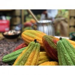 Les produits «Ethiquable» au service du commerce équitable et de l'économie solidaire