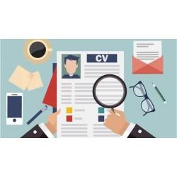 Comment rédiger un CV sans expérience professionnelle ?