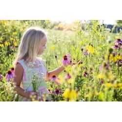 5 idées faciles pour initier son enfant à une attitude éco-responsable