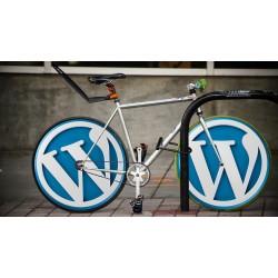10 astuces qui rendront visible aux yeux de Google votre site Wordpress