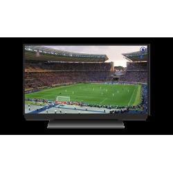 Retransmission d\\\'un match de football