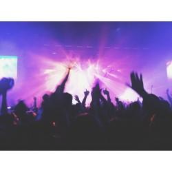 Foule dans concert