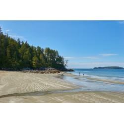 Les 8 plus belles plages du Canada