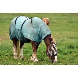 À quoi servent les couvertures pour chevaux?