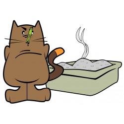 Comment apprendre à votre chat à faire ses besoins dans sa litière?