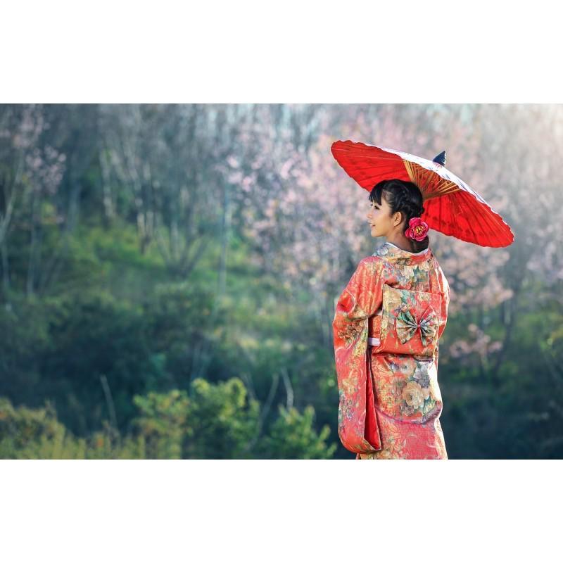 Dame en tenue traditionnelle - Voyage au Japon