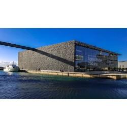 Marseille : visites gratuites d'expositions d'arts
