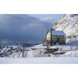 Quel isolant écologique choisir pour sa maison ?