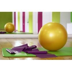3 exercices avec un gros ballon pour un ventre plat