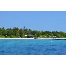 Évasion et plongée aux îles Maldives