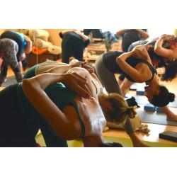 C'est décidé, je me mets au yoga… Mais lequel choisir ?