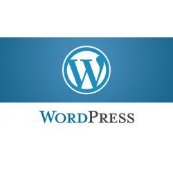 Comment déceler les failles de votre site WordPress et renforcer la sécurité ?