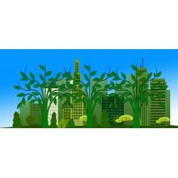 Top 5 des grandes villes les plus écologiques au monde