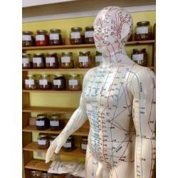 L'acupuncture: un traitement efficace contre l'anxiété et le stress