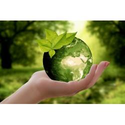 18 gestes écolos à adopter au quotidien pour sauver la planète