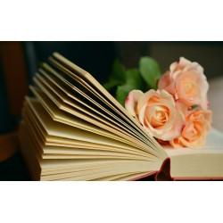 Techniques super rentables pour la vente de livres