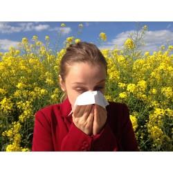 En finir avec les allergies saisonnières grâce au Jala neti !