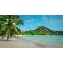 Les Seychelles : Une destination de vacances incontournable