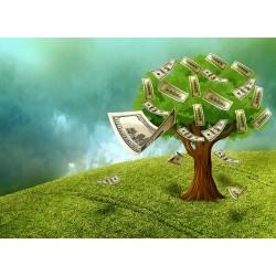 Transformation crédit d\'impôt pour la transition énergétique en prime forfaitaire aides rénovation