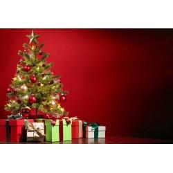 des cadeaux et un sapin respectueux de l\'environnement
