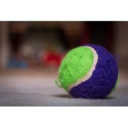 Comment soulager un bas de dos tendu et douloureux avec deux balles de tennis ?
