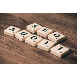 AUDIT SEO PROFESSIONNEL