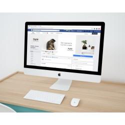 facebook_brand_content