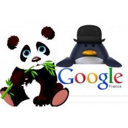 pénalité google