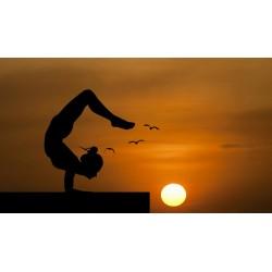 Postures inversées en yoga : pas forcément acrobatiques, mais toujours bénéfiques !