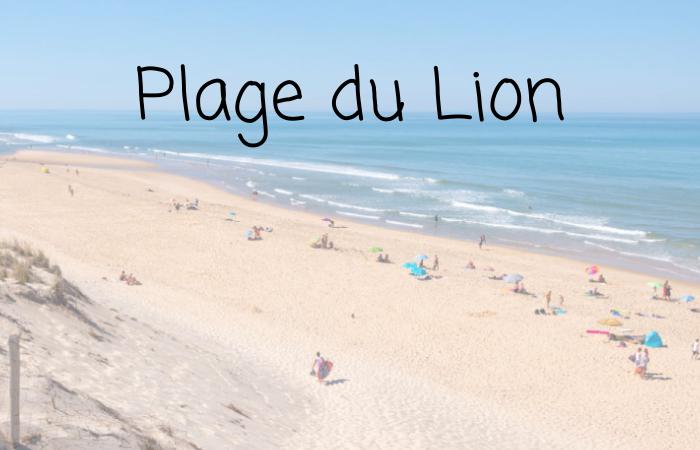 plage-gironde-du-lion